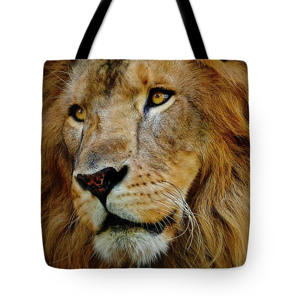 Tote Bag featuring the photograph El Rey by Skip Hunt