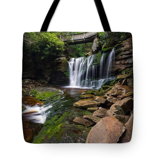 Elakala Falls On Shays Run Blackwater Falls State Park Tote Bag by Rick Dunnuck