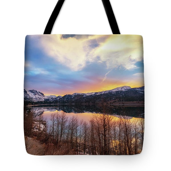 Elevated Tote Bag
