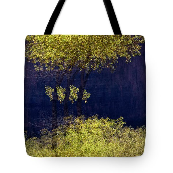 Elegance In The Park Horizontal Adventure Photography By Kaylyn Franks Tote Bag