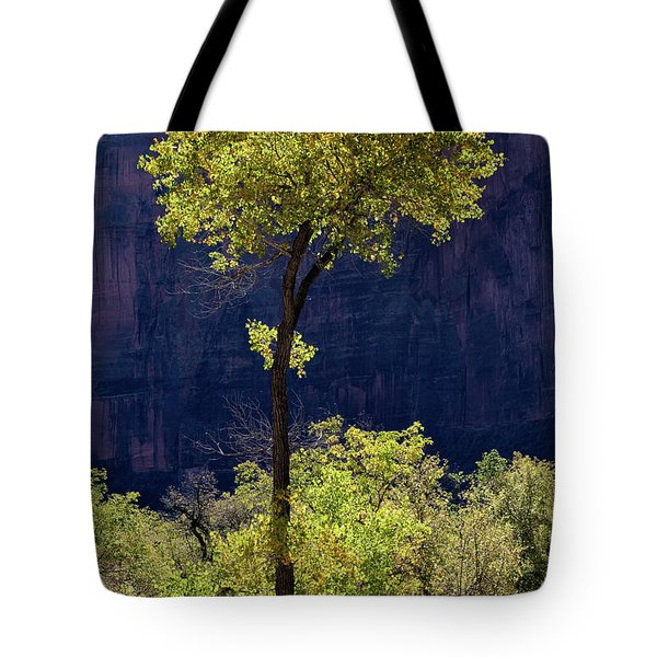 Elegance In The Park Utah Adventure Landscape Photography By Kaylyn Franks Tote Bag