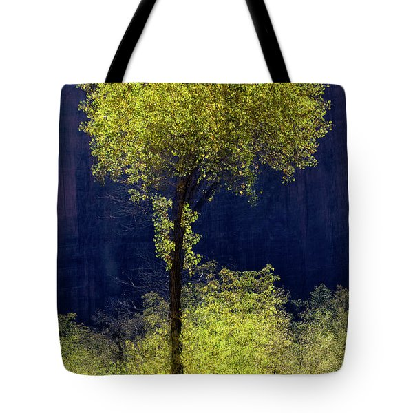 Elegance In The Park Vertical Adventure Photography By Kaylyn Franks Tote Bag