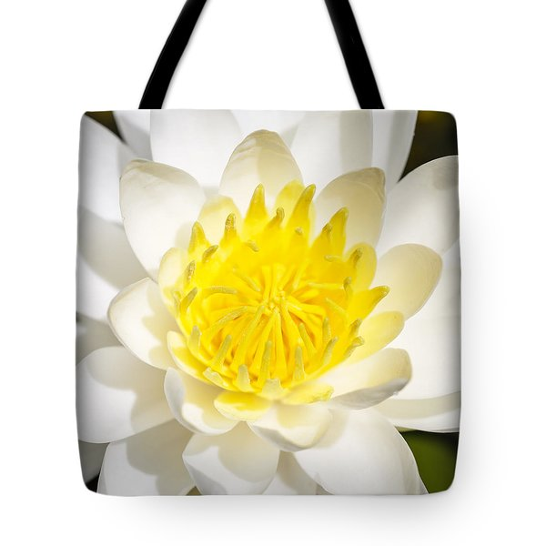 Elegant Lotus Tote Bag