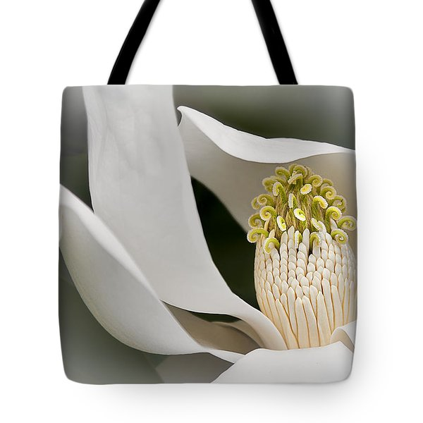 Elegant Magnolia II Tote Bag