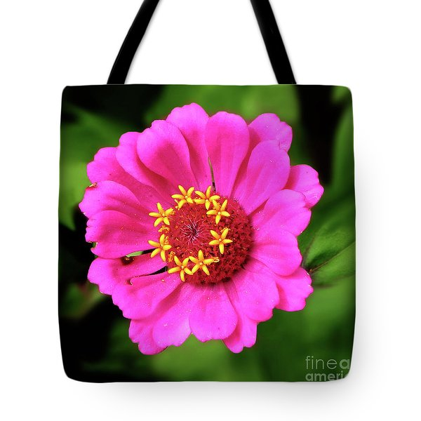 Elegant Zinnia Flower Pink Tones Tote Bag