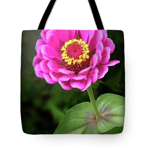 Elegant Zinnia Soft Glow Tote Bag