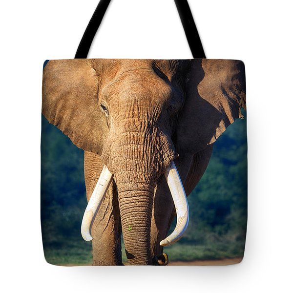 Elephant Approaching Tote Bag by Johan Swanepoel