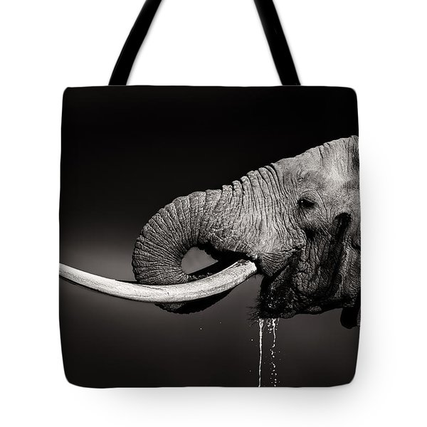 Elephant Bull Drinking Water - Duetone Tote Bag