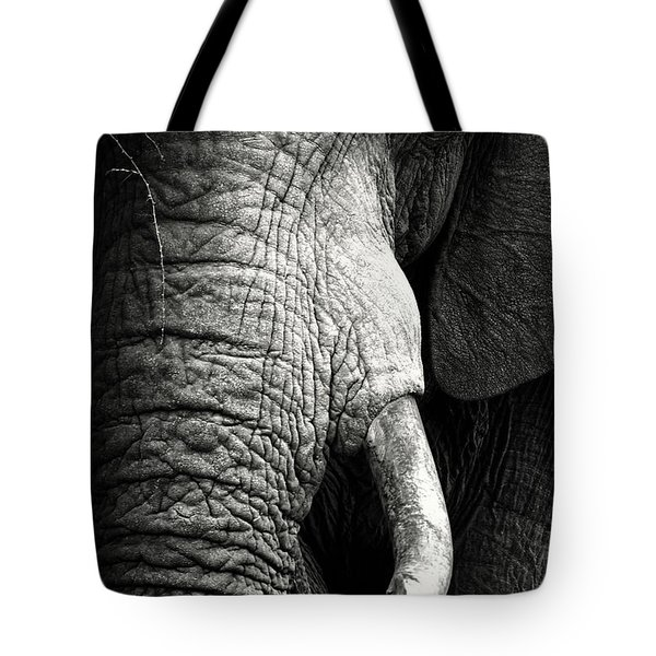 Elephant Close-up Portrait Tote Bag