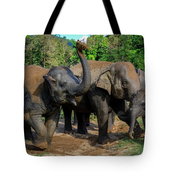 Elephant Cool Down Tote Bag