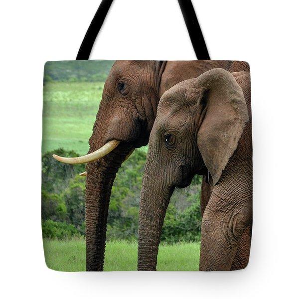 Elephant Couple Profile Tote Bag