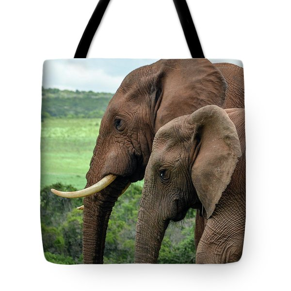 Elephant Couple Profile Tote Bag