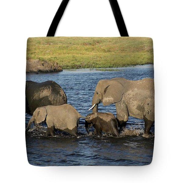 Elephant Crossing Tote Bag