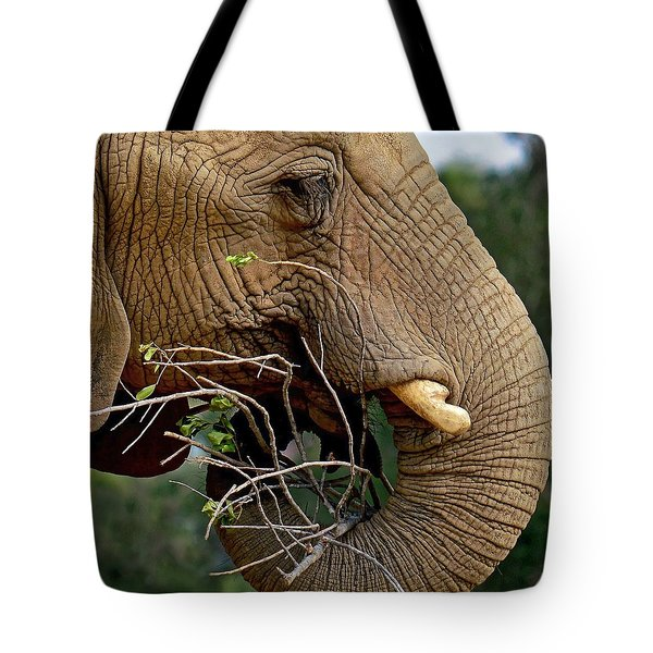 Elephant Curl Tote Bag