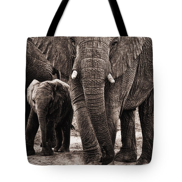Elephant Family Time Tote Bag