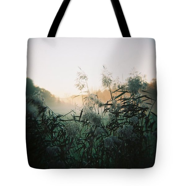 Elephant Grass At Dawn Tote Bag