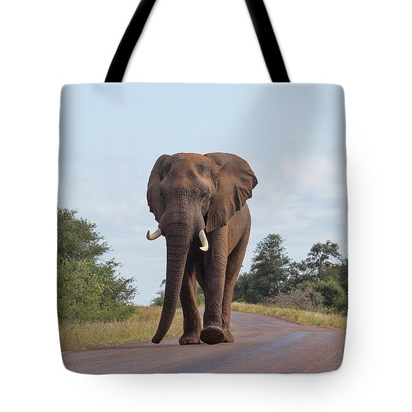 Elephant In Kruger Tote Bag