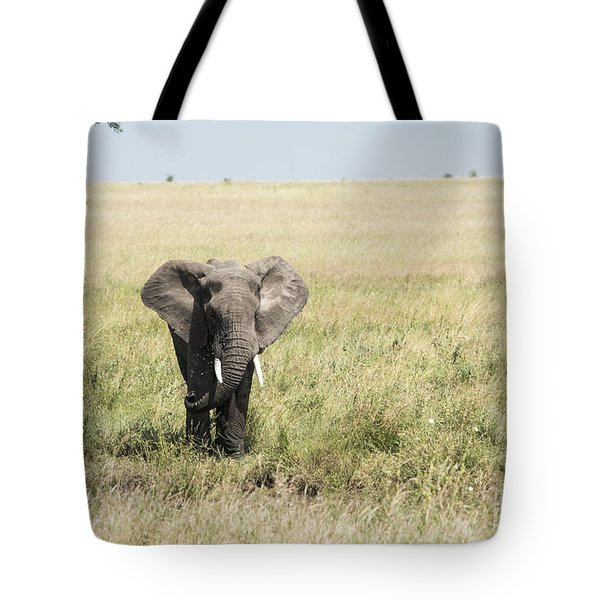 Tote Bag featuring the photograph Elephant In The Serengeti by Pravine Chester