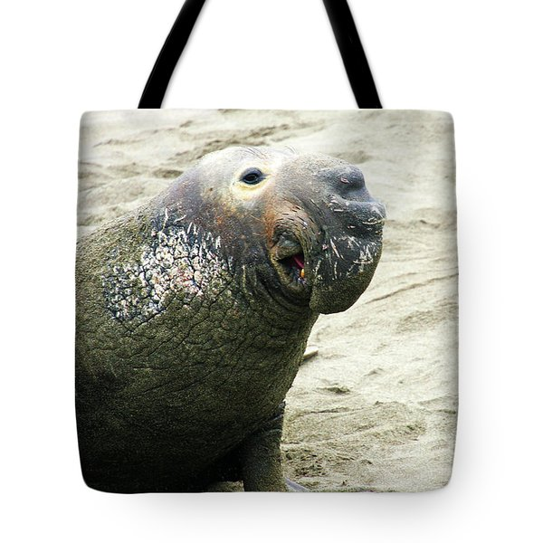 Tote Bag featuring the photograph Elephant Seal by Anthony Jones