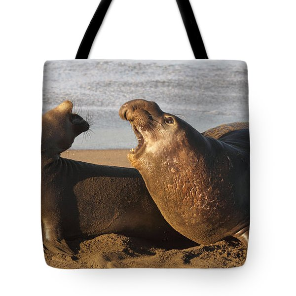 Tote Bag featuring the photograph Elephant Seals Mating by Max Allen