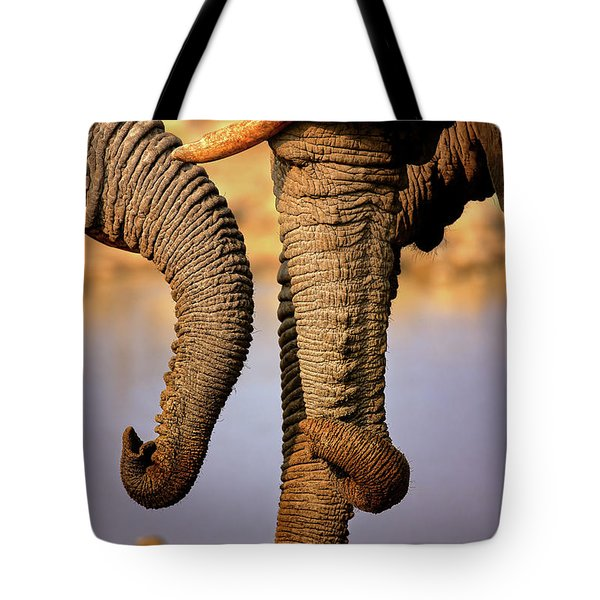 Elephant Trunks Interacting Close-up Tote Bag