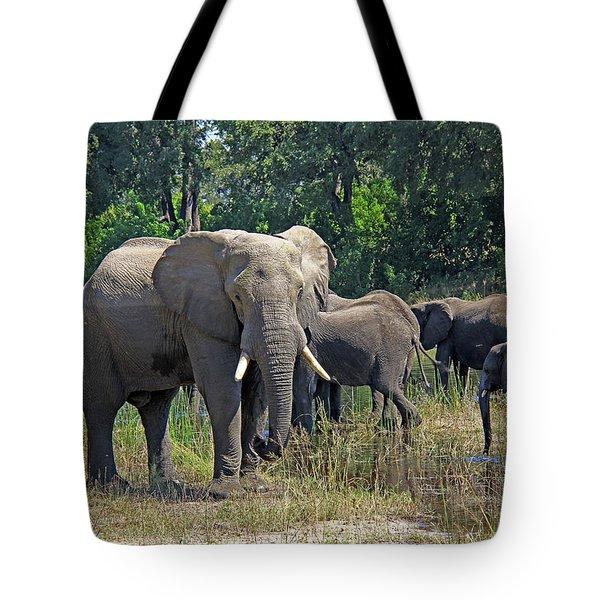 Elephants 3 Tote Bag