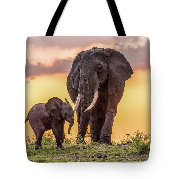 Elephants At Sunset Tote Bag