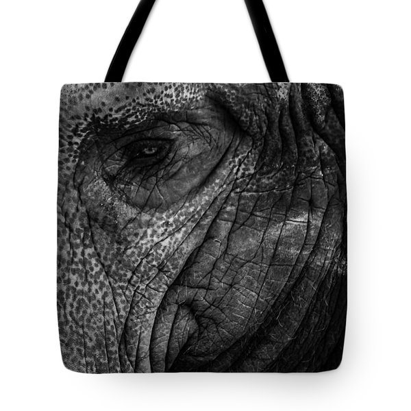 Elephants Eye Tote Bag by Keith Allen