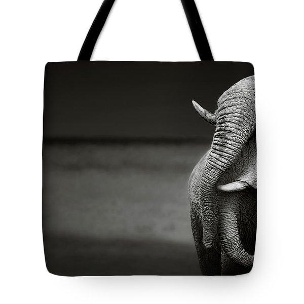 Elephants Interacting Tote Bag