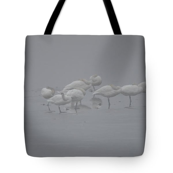 Eleven Swans Sleeping Tote Bag