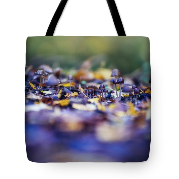Elfin World Tote Bag