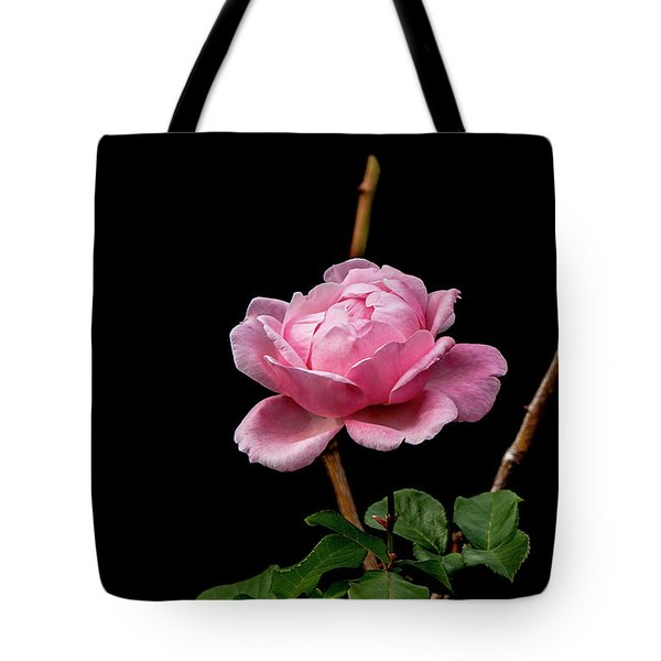 Tote Bag featuring the photograph Elizabeth by Elaine Teague