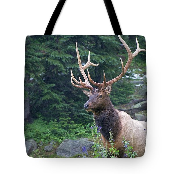 Tote Bag featuring the photograph Elk 4 by Gary Lengyel