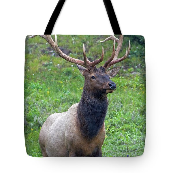 Tote Bag featuring the photograph Elk 5 by Gary Lengyel