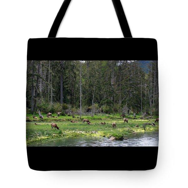 Elk Along The River Tote Bag