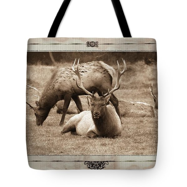 Tote Bag featuring the photograph Elk by Athala Carole Bruckner