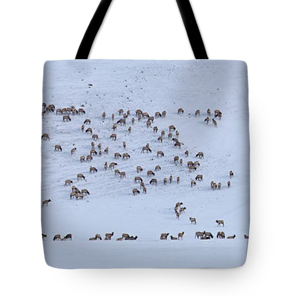 Elk Herd In Winter Tote Bag