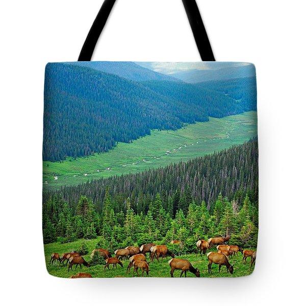 Elk Highlands Tote Bag