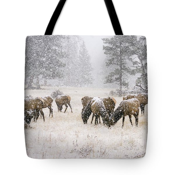 Elk In A Snow Storm - 1135 Tote Bag
