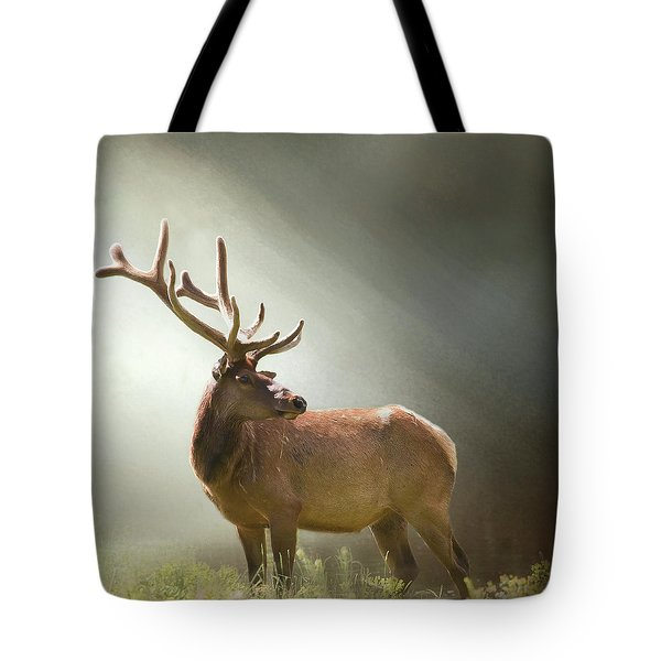 Tote Bag featuring the photograph Elk In Suns Rays by David and Carol Kelly