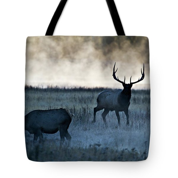 Tote Bag featuring the photograph Elk In The Mist by Wesley Aston