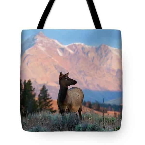 Elk Majesty Tote Bag