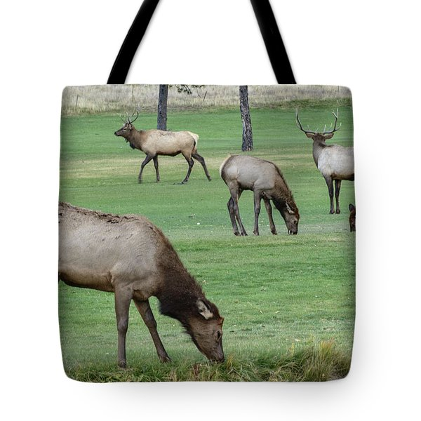 Elk On Golf Course Estes Park Colorado Tote Bag