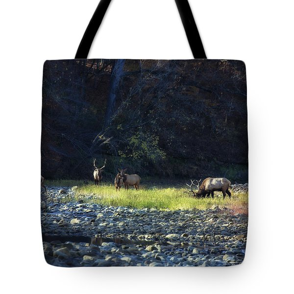Tote Bag featuring the photograph Elk River Crossing At Sunrise by Michael Dougherty