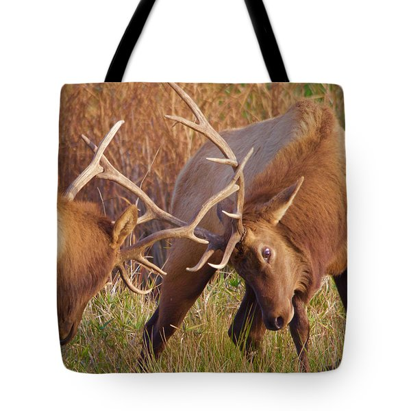 Tote Bag featuring the photograph Elk Tussle by Todd Kreuter