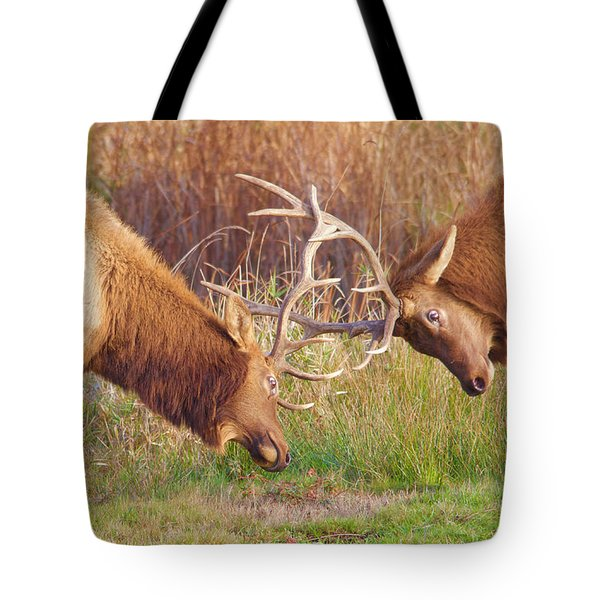 Elk Tussle Too Tote Bag by Todd Kreuter