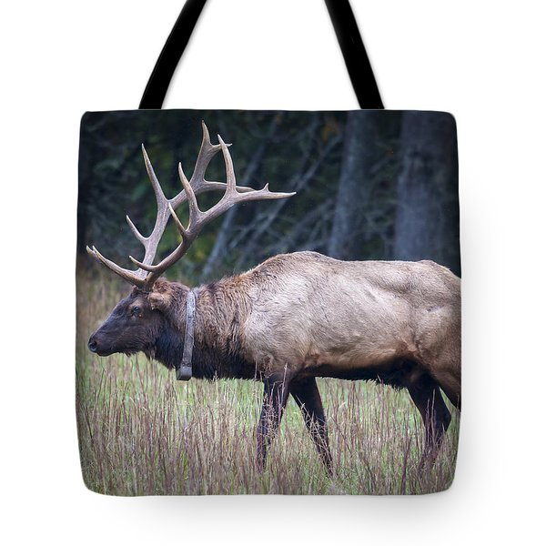 Elk Tote Bag by Tyson and Kathy Smith