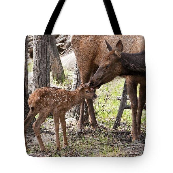 Elk With Newborn Calf Tote Bag