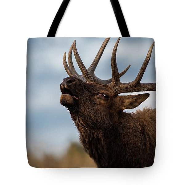 Elk's Screem Tote Bag by Edgars Erglis