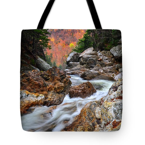Ellis River Autumn View Tote Bag